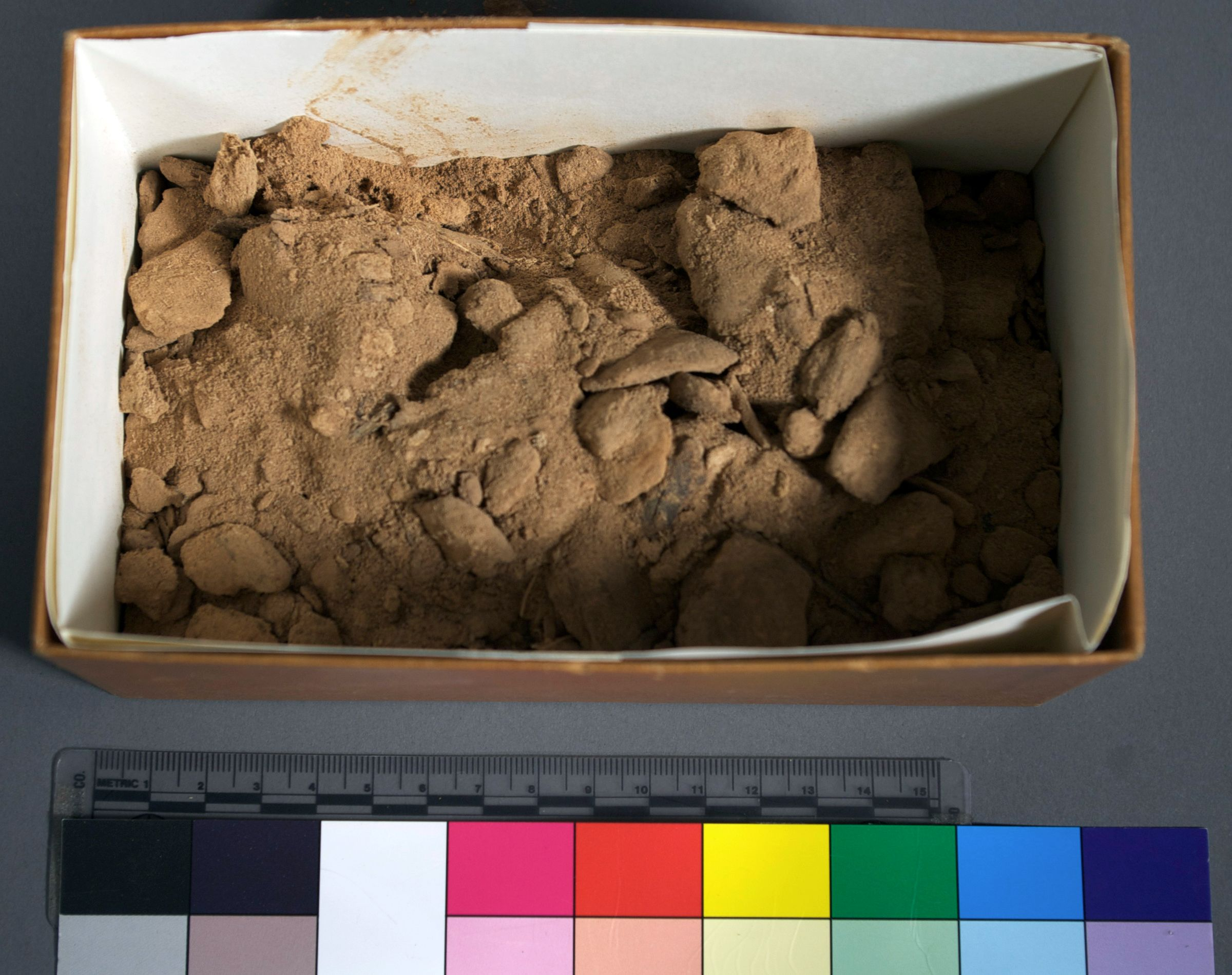 Object(s) photograph: Site: Giza; view: G 1011