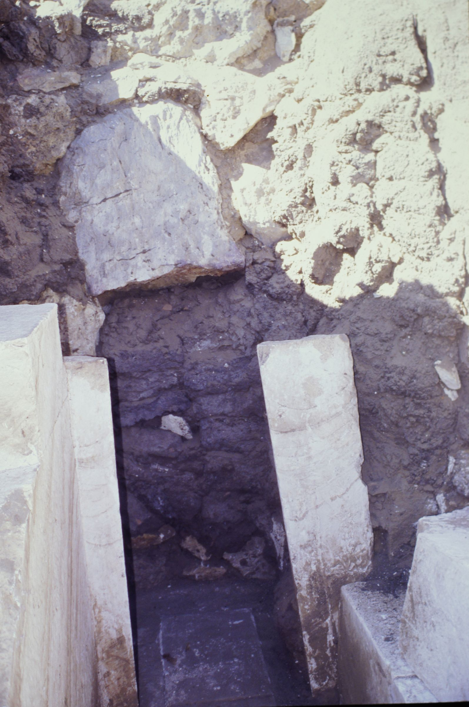 Abu Bakr Cemetery: Site: Giza; View: Senenu (2)