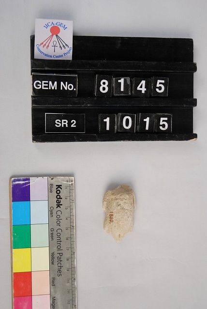 Object(s) photograph: Site: Giza; View: G 8988