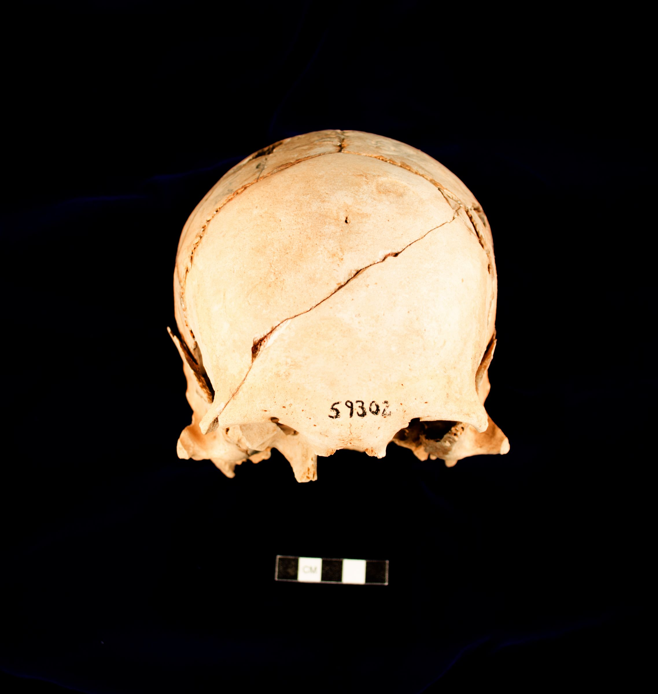Object(s) photograph: Site: Giza; View: G 2414