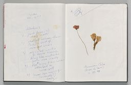 Untitled (Notes And Pressed Flowers, Two-Page Spread)