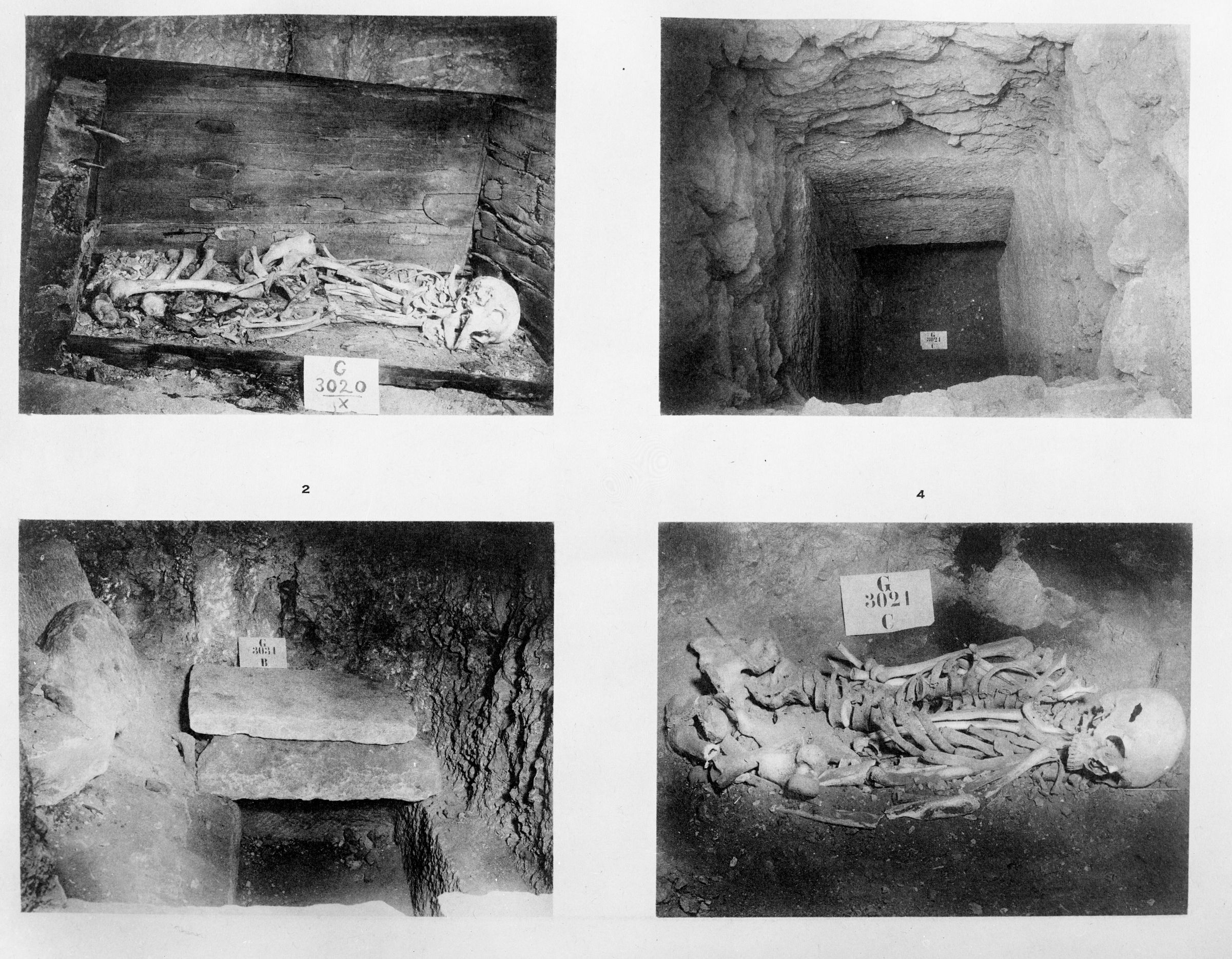 Western Cemetery: Site: Giza; view: G 3020, G 3021, G 3031