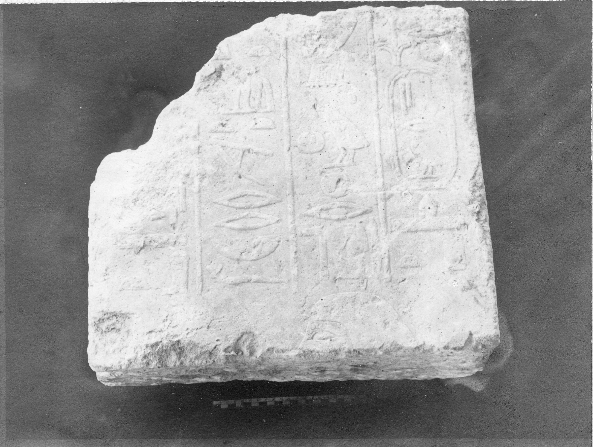 Object(s) photograph: Site: Giza; view: G 3008