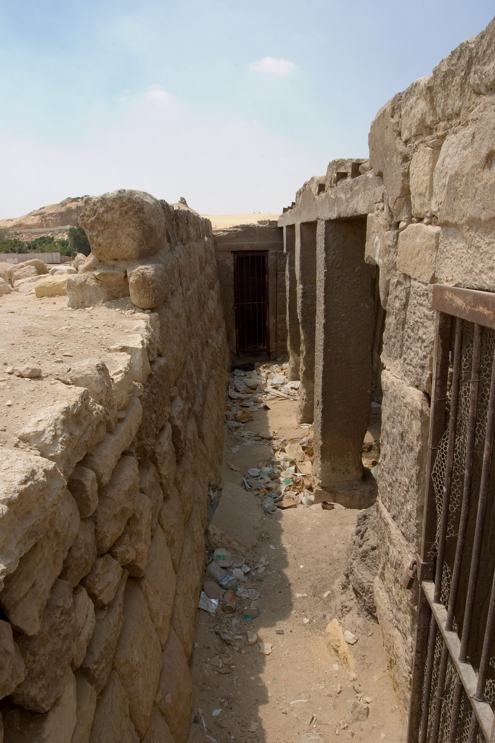 Central Field (Hassan): Site: Giza; View: G 8974