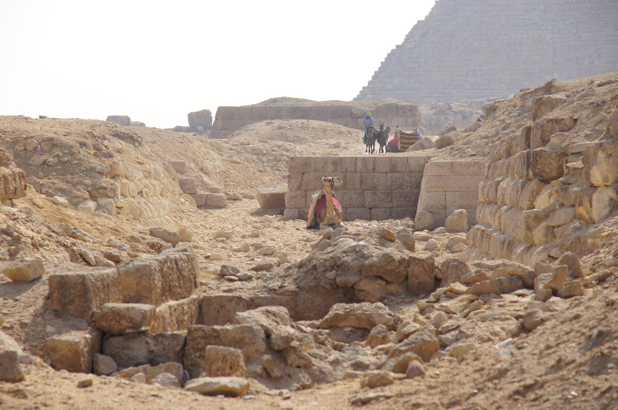 Western Cemetery: Site: Giza; View: G 2160, G 2165, G 2155, G 2156, G 4940(?)