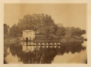 [Harvard University Crew rowing, photograph Digital Object