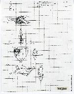 Acianthera eximia image