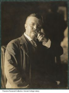 Governor Roosevelt, taken in the room of his hotel in Philadelphia, during the Republican National Convention, 1900. olvwork378034