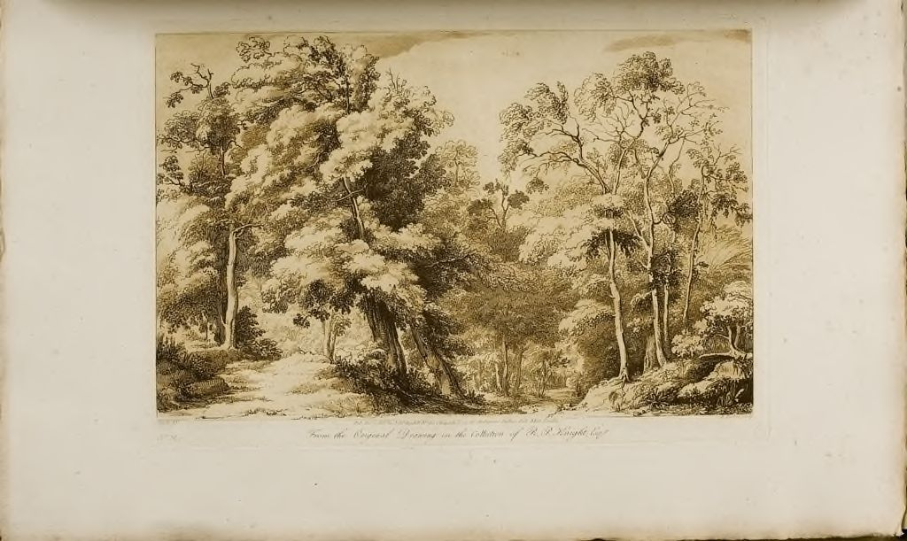 A Study, Wooded Scene