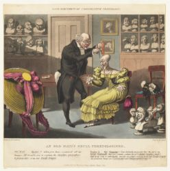 Rare specimens of comparative craniology: an old maid's skull phrenologised