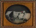 Untitled (Postmortem Portrait Of Infant With Flowers)