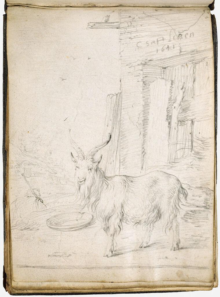 A Goat In A Barnyard