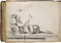 Blank Page; Verso: Vanitas Still Life With Armor