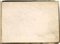 Blank Page; Verso: Sketch Of Foliage(?)