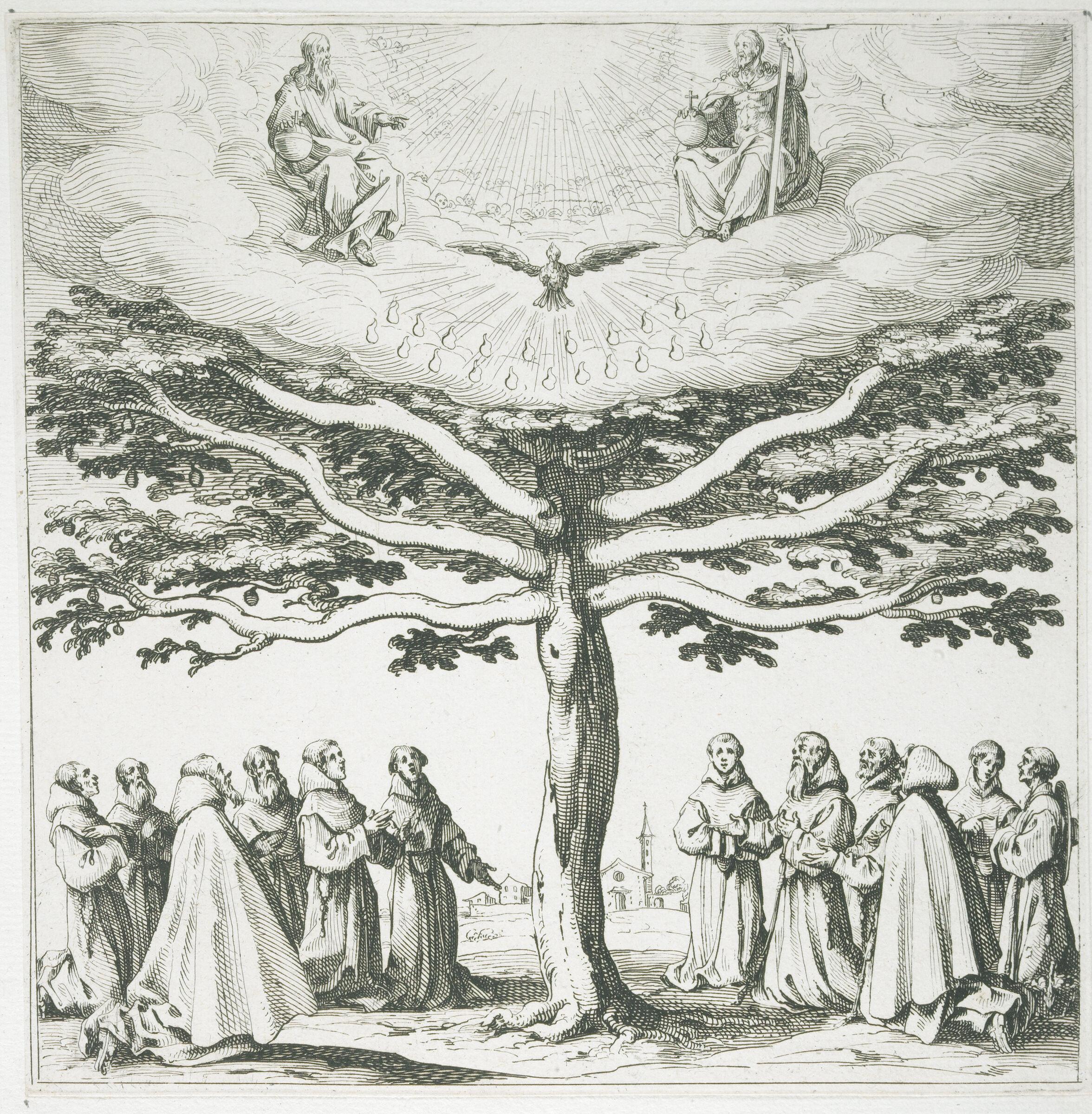 Tree Of Saint Francis